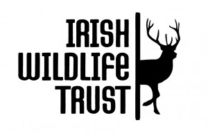 Irish-Wildlife-Trust-LOGO-300x193