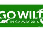 Go wild in Galway-01
